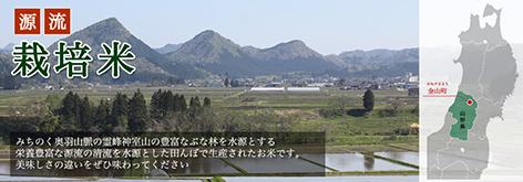 山形県最東北部に位置する金山町で栽培されているお米